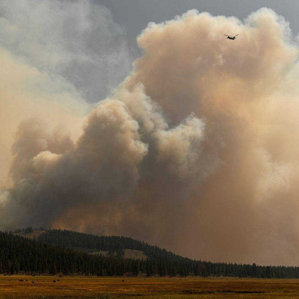 O fumo dos incêndios florestais está a transformar as nuvens, afetando a ocorrência de chuva