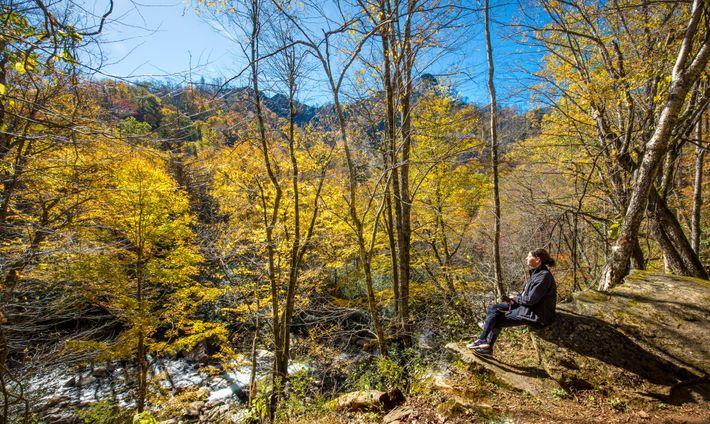 Alguns viajantes frequentes dizem que se querem concentrar em experiências significativas em áreas remotas, como na ...