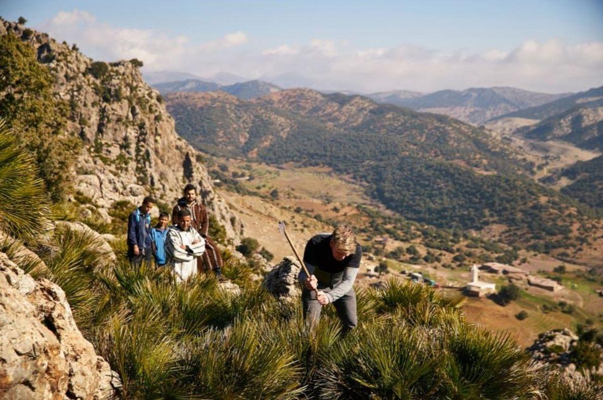 Habitantes locais observam Gordon Ramsay a tentar cortar folhas de palmito, uma iguaria local, nas montanhas ...