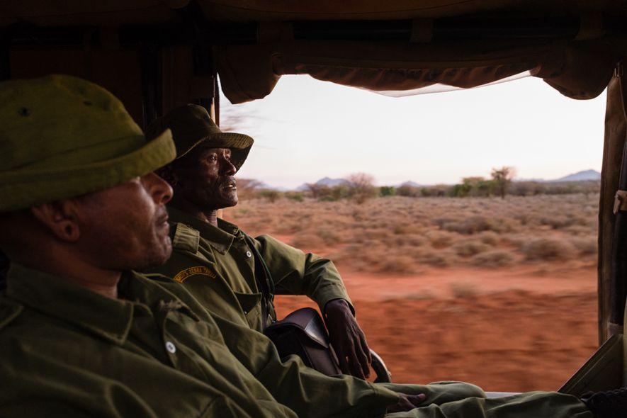 Lewarani Loidingae (à esquerda) e Lenengetai Lmantoros, embaixadores do Fundo Zebra-de-Grevy, treinados em segurança e vigilância, ...
