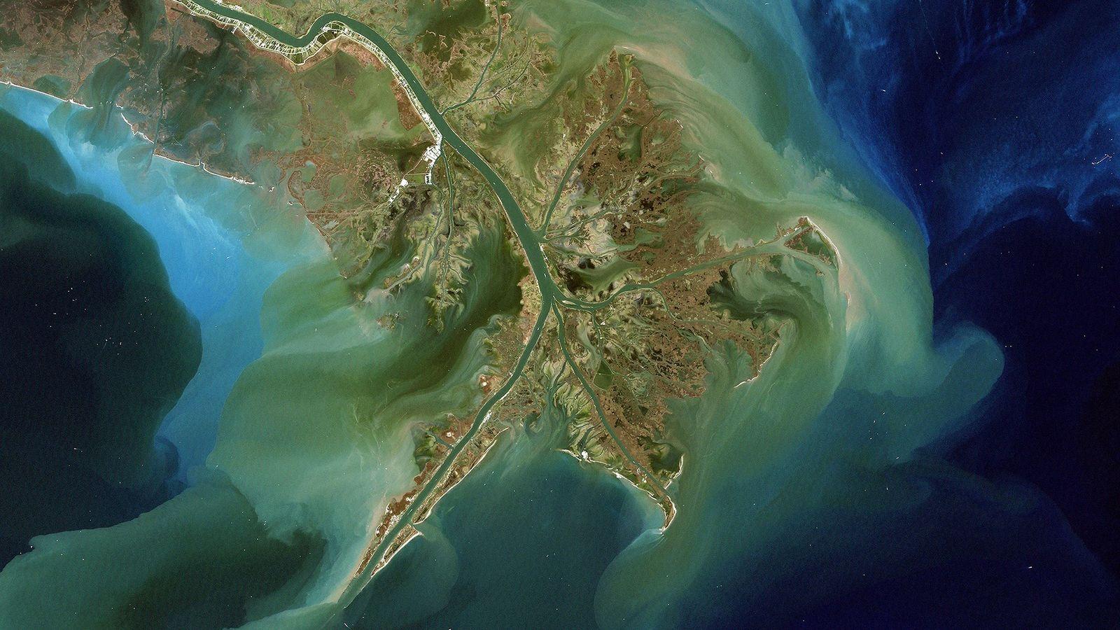 Visto de cima, o rio Mississippi transporta sedimentos para o Golfo do México. Estes sedimentos contêm ...