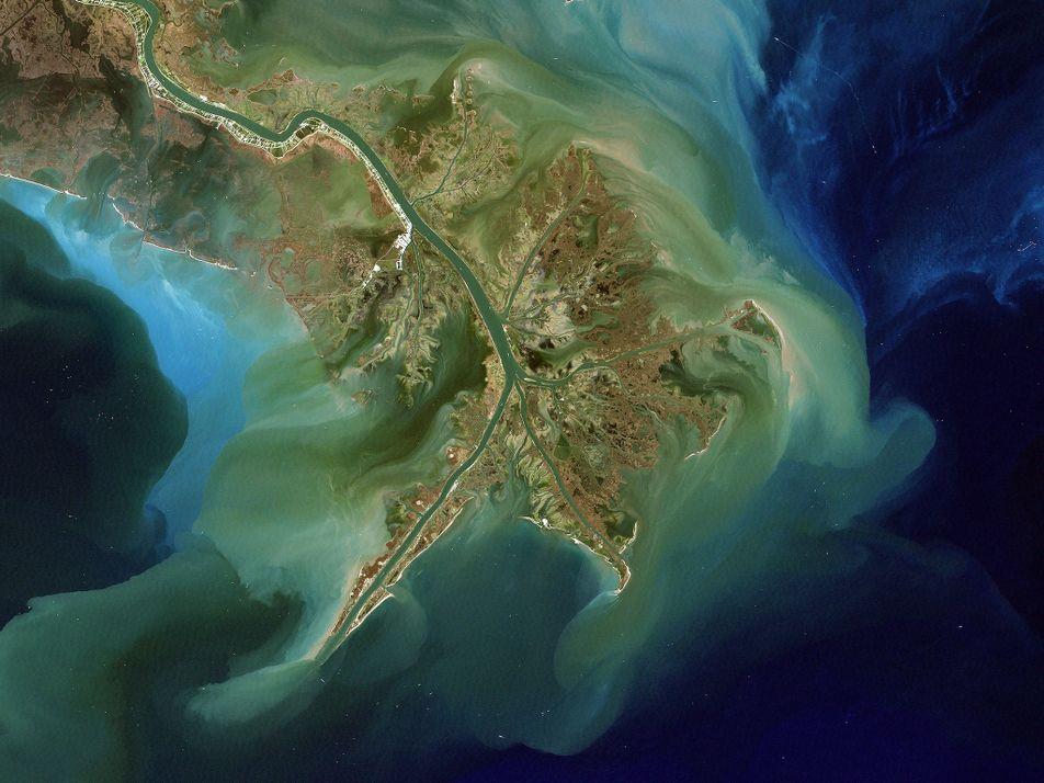 'Zona Morta' de 20.000 Km2 Pode Ser Uma das Maiores do Golfo do México
