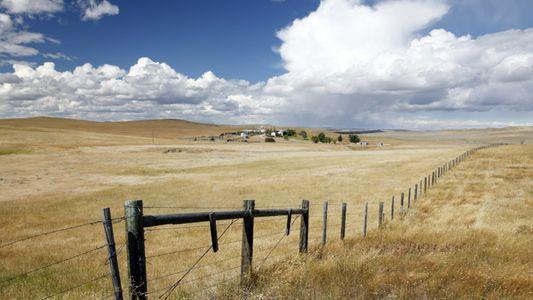 No Wyoming, estão a derrubar vedações para abrir caminho para a vida selvagem
