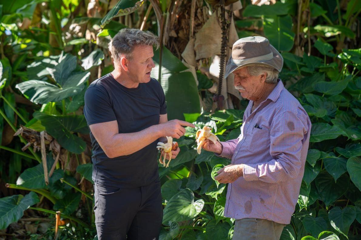 O agricultor Chuck Boerner apresenta as deliciosas bananas-vermelhas a Gordon Ramsay.