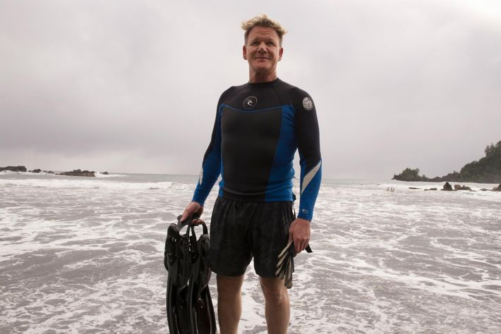 Gordon Ramsay numa praia do Havai após uma sessão de mergulho para apanhar ouriços-do-mar e crustáceos. ...