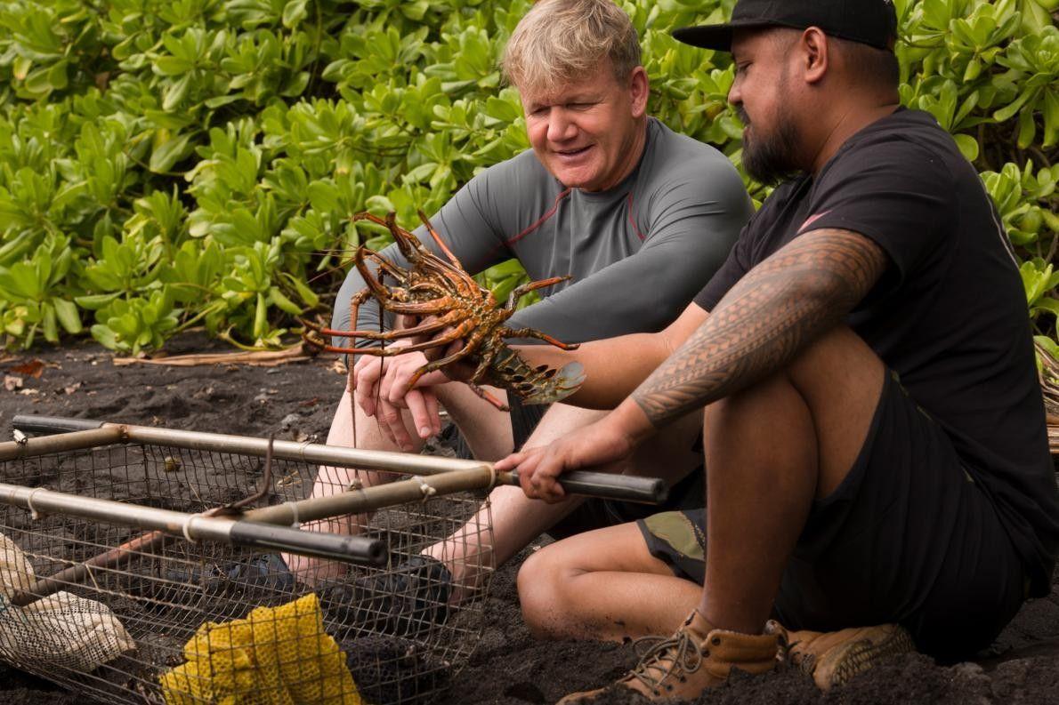 Gordon Ramsay e o Chef Sheldon Simeon com uma lagosta espinhosa acabada de apanhar.