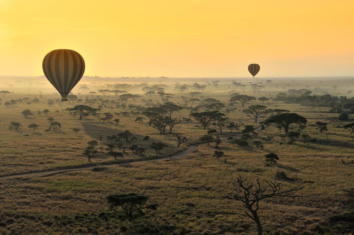 Parque Nacional do Serengeti, Tanzânia