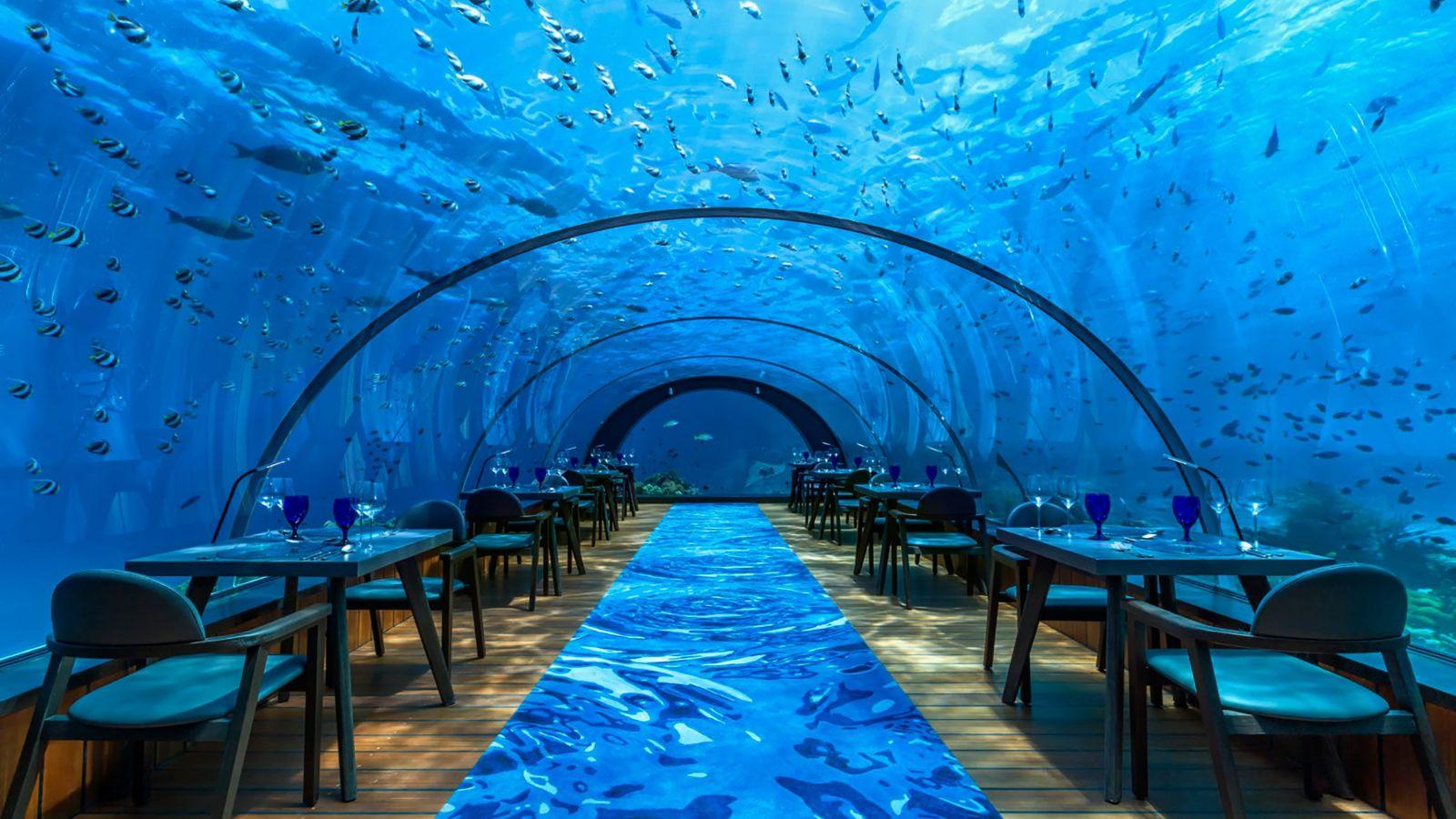 Fique debaixo de água sem se molhar no Resort Hurawalhi, nas Maldivas.