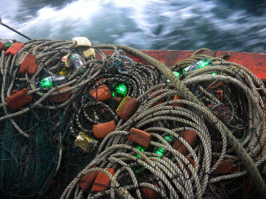 Redes de pesca com luzes LED integradas.