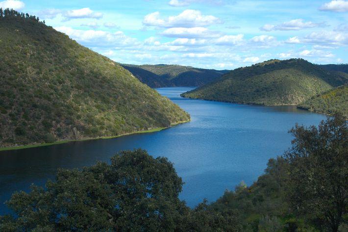 Rio Tejo, Parque Natural do Tejo Internacional.