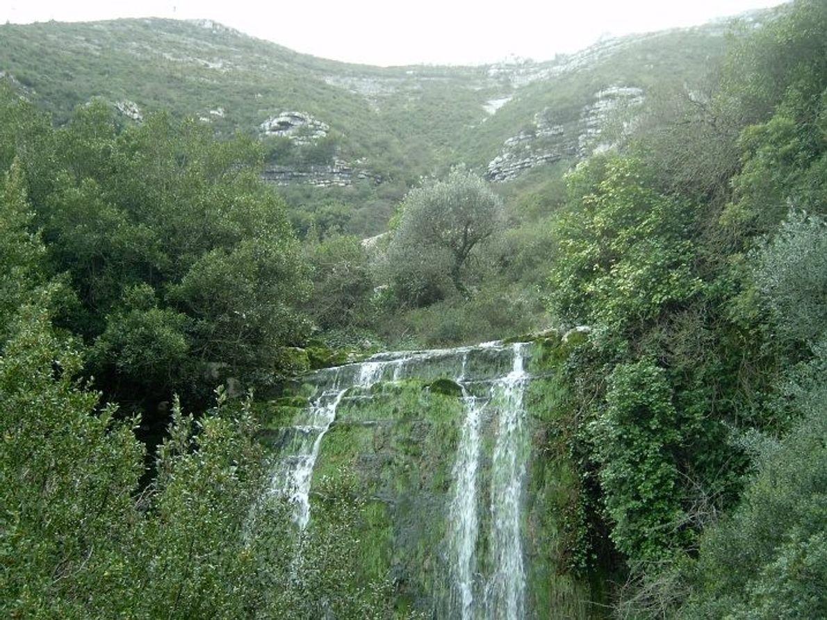 Fórnea, Parque Natural de Serra de Aire e Candeeiros.