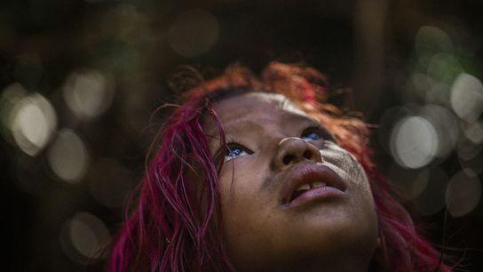 As crianças Guarani Mbya, como Manuela Vidal, aprendem a sua língua e cultura nas escolas públicas, ...
