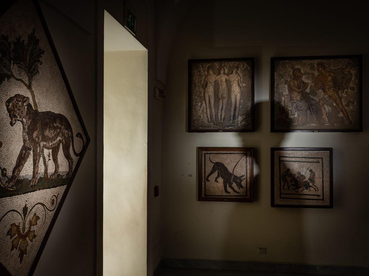 Mosaicos escavados nas grandes casas da antiga Pompeia decoram as paredes do Museu Arqueológico Nacional de ...