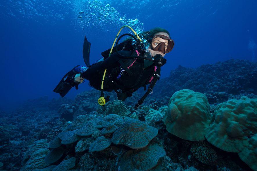 Jessica Cramp, exploradora da National Geographic, trabalha para proteger os tubarões que navegam nas águas das ...