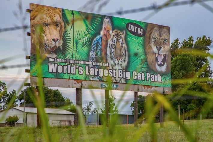 O Parque de Animais Exóticos Greater Wynnewood de Oklahoma, que antigamente pertencia a Joe Exotic, reabriu ...