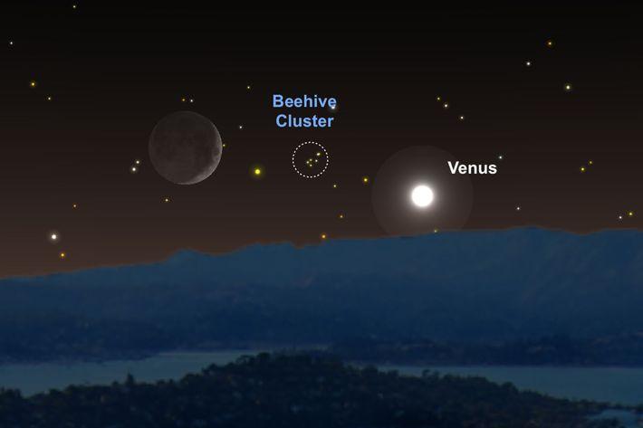 Vénus e a Lua servem de pontos de referência para localizar Praesepe ou a Colmeia.