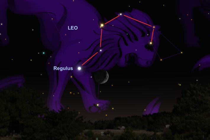 A Lua irá pairar perto da estrela Regulus.