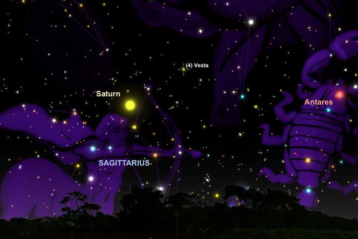 Procure Vesta entre Saturno e a estrela vermelha Antares.