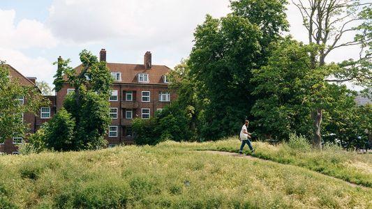 'Forrageio Urbano' – A Nova Forma de Explorar Uma Cidade