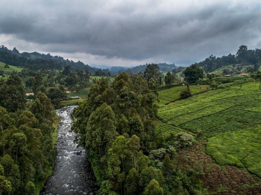 O rio Mathioya serpenteia pela aldeia de Gacharageini, no condado de Muranga, no Quénia.