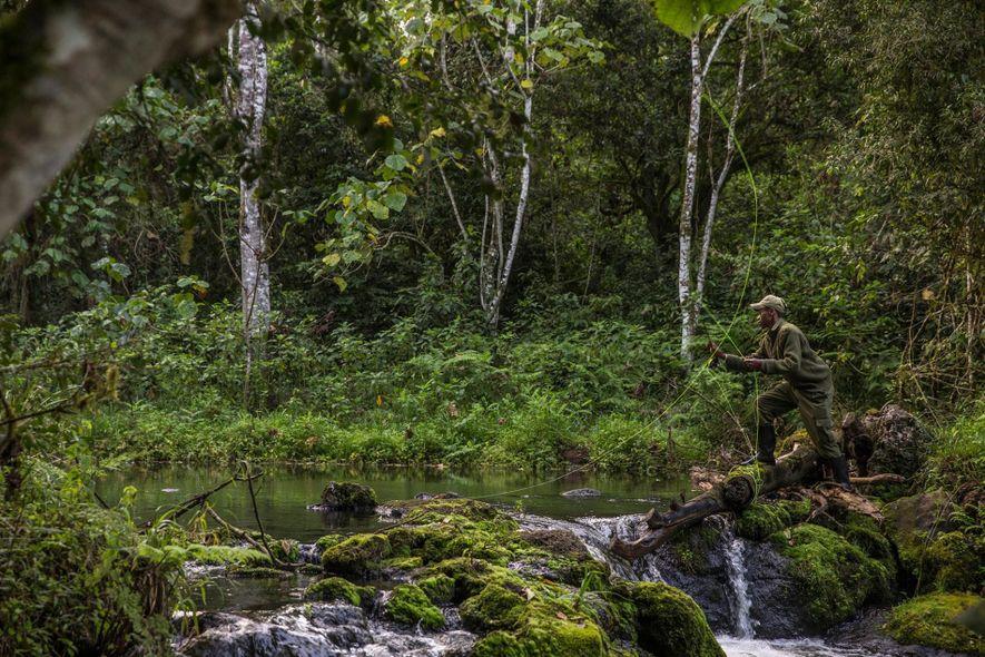 David Miner, um guia da Ragati Conservency, lança a linha num curso de águas calmas.