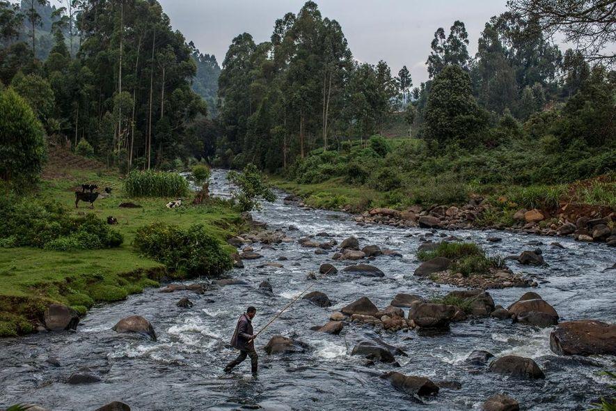 Um pescador local cruza as águas do rio Mathioya, avançando entre rochas.