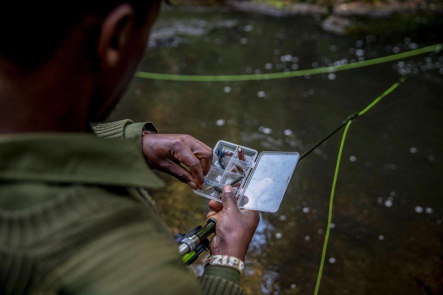 David Miner escolhe um isco artificial, ou mosca na gíria, para uma manhã de pesca à ...