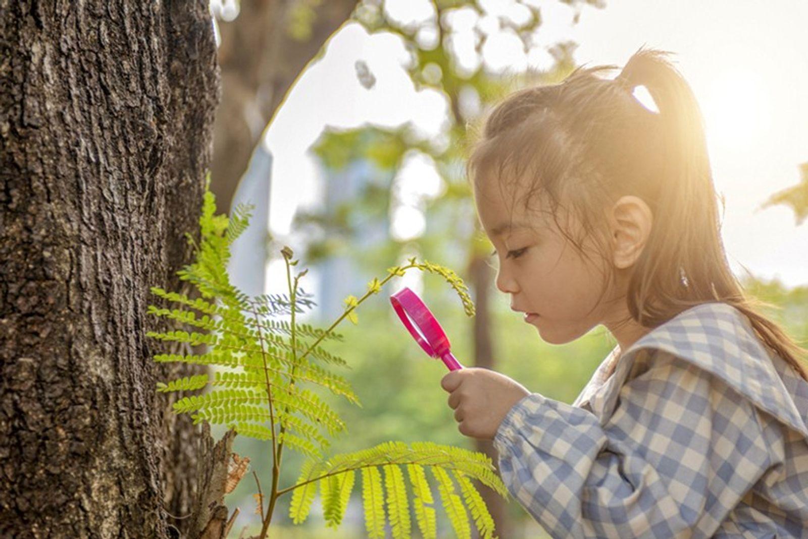 Está Preocupado com os Efeitos do Coronavírus na Escolaridade dos Seus Filhos? A Natureza Pode Ajudar.
