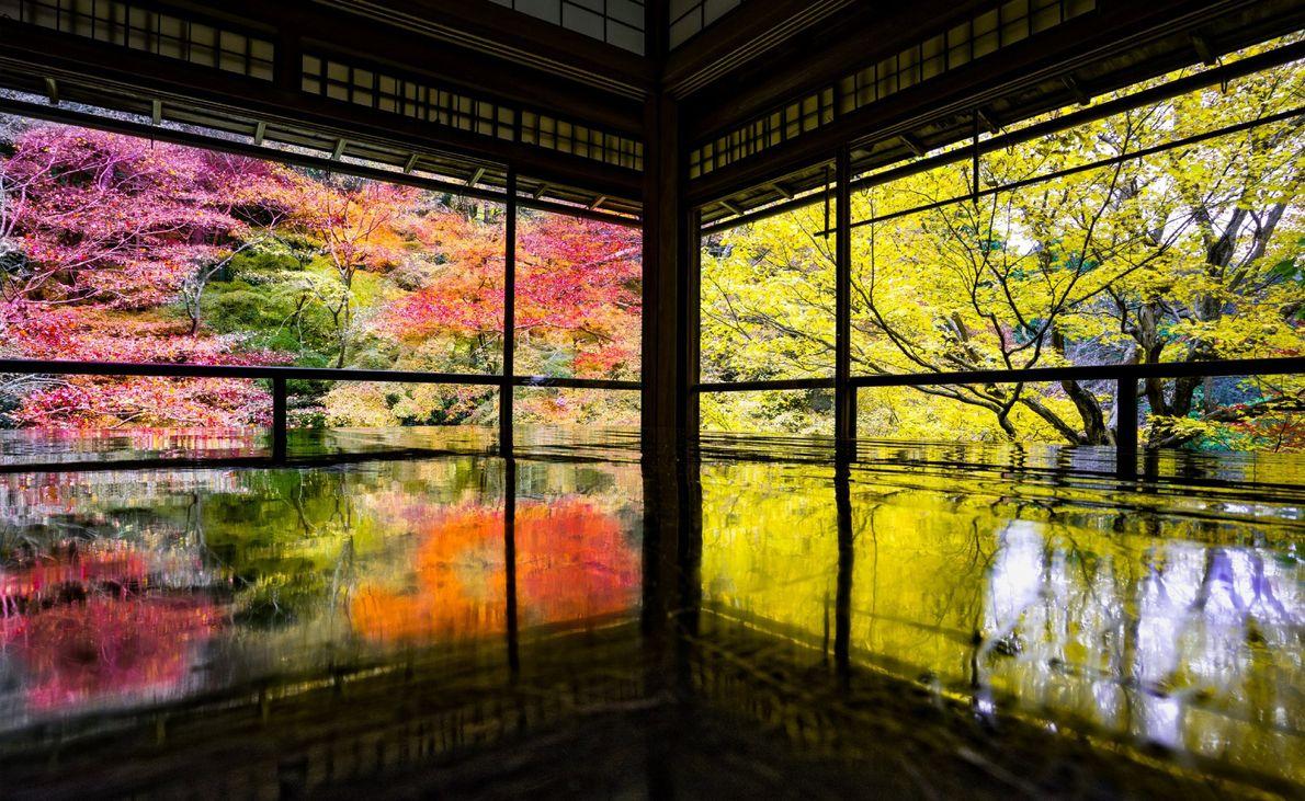 Um jardim à beira da água reflete a folhagem de outono através das aberturas de um ...