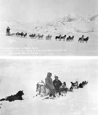 """Leonhard Seppala fotografado com os seus """"Corredores Siberianos"""" em 1916 (em cima) e em 1923 com ..."""