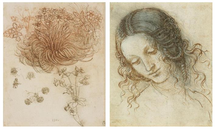 Esquerda: Leonardo explorava todos os aspetos da botânica, desde a espessura dos galhos até ao efeito ...