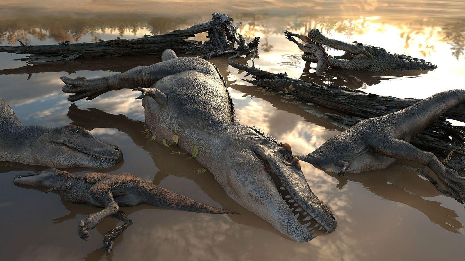 grupo de tiranossauros afogados