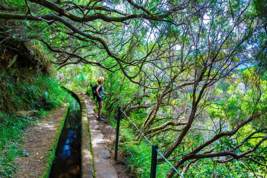 O trilho da Levada das 25 Fontes percorre levadas na Madeira – canais históricos de irrigação ...