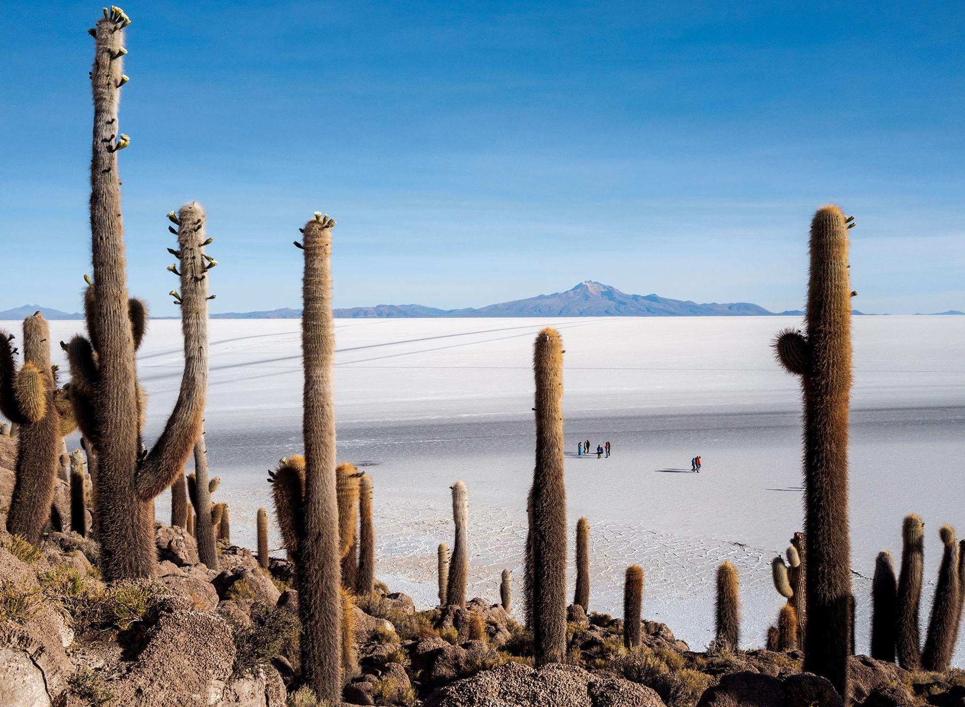 Na pré-história, quando a planície de sal de Uyuni na Bolívia era um lago, a Incahuasi ...