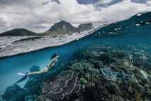 Uma mergulhadora explora os recifes de coral em torno da Ilha de Lord Howe