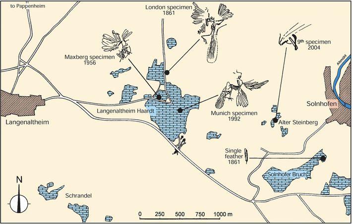 Um mapa do distrito da pedreira na Alemanha, onde cinco espécimes de Archaeopteryx foram encontrados, mostra ...