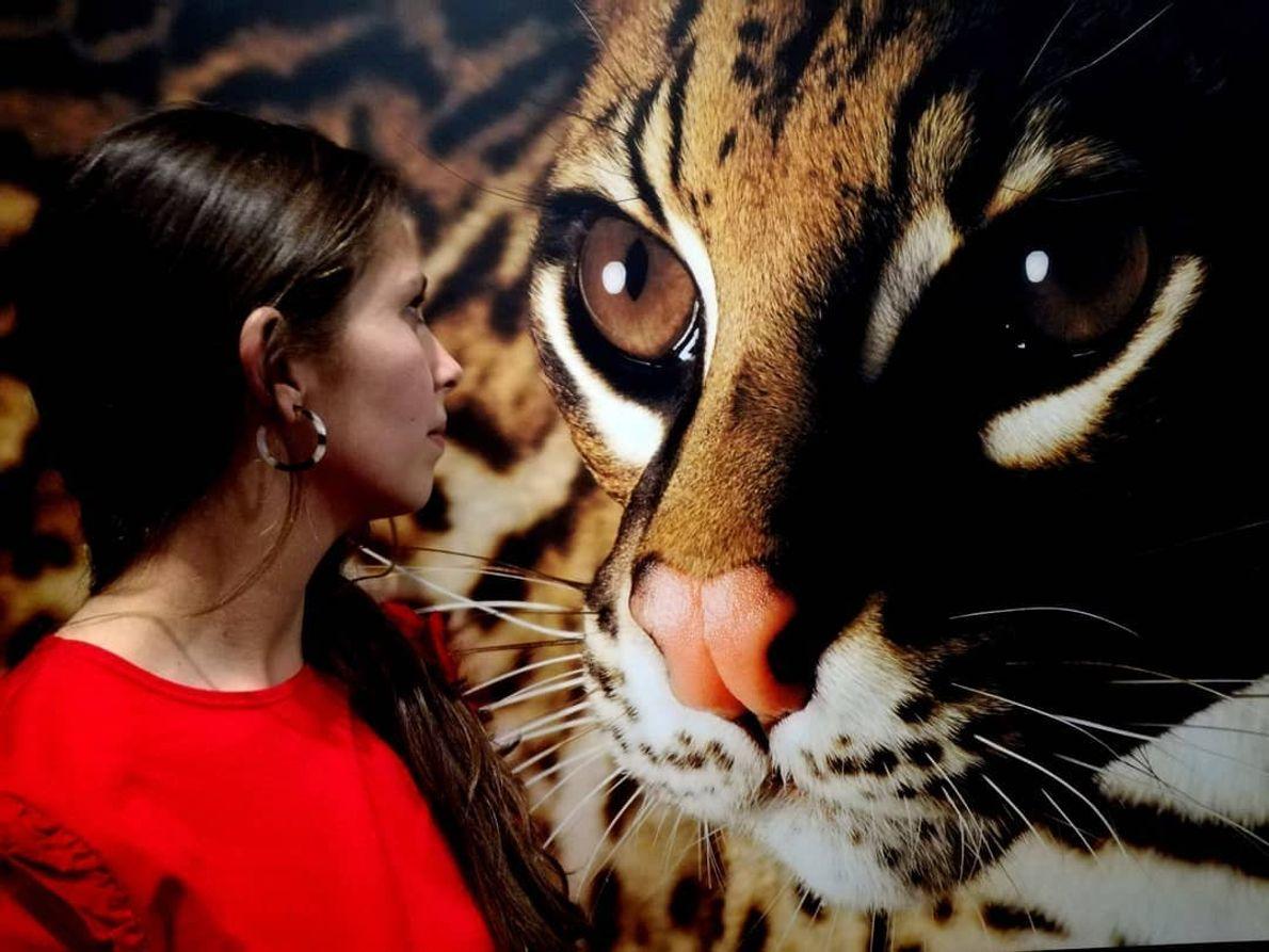 Imagem da vencedora @mariafontainha na exposição Photo Ark