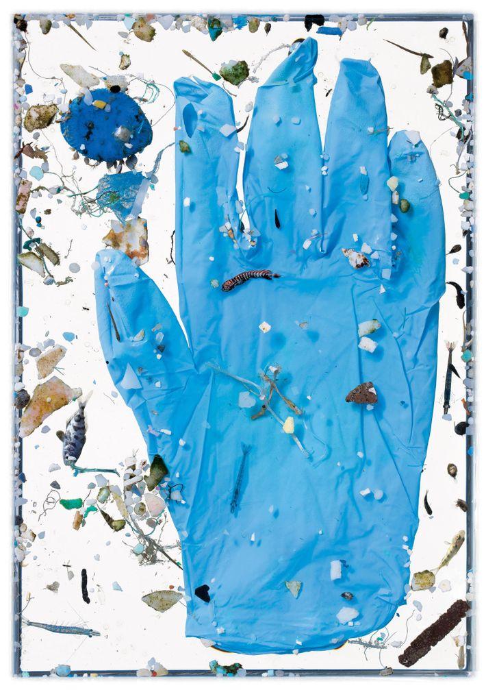 Esta luva azul não esteve na água tempo suficiente para sofrer o destino da maioria dos ...