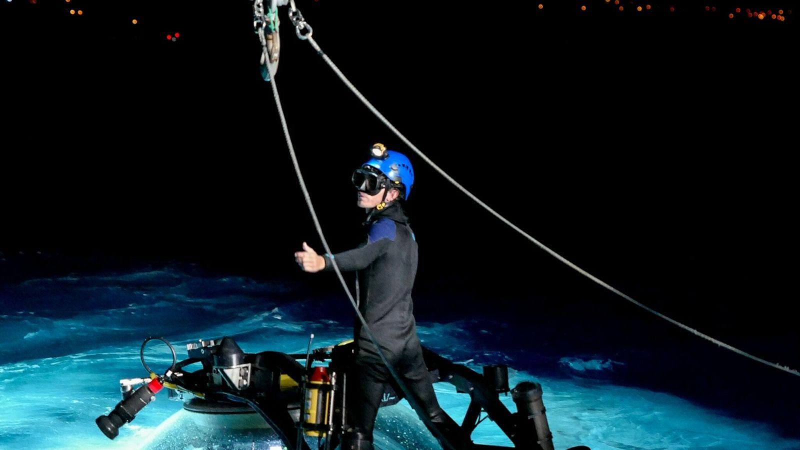 mergulho de pesquisa de tubarões-albafar
