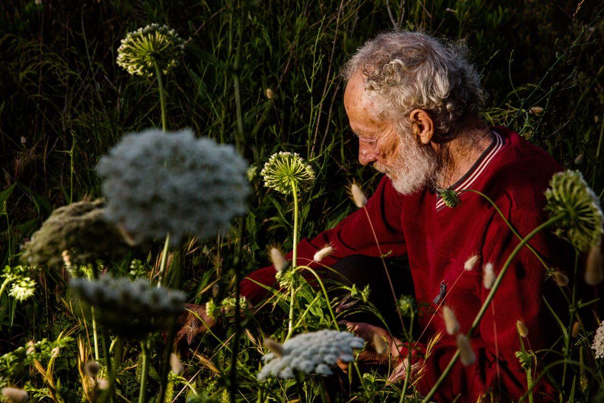 Morandi recolhe ervas atrás de sua casa