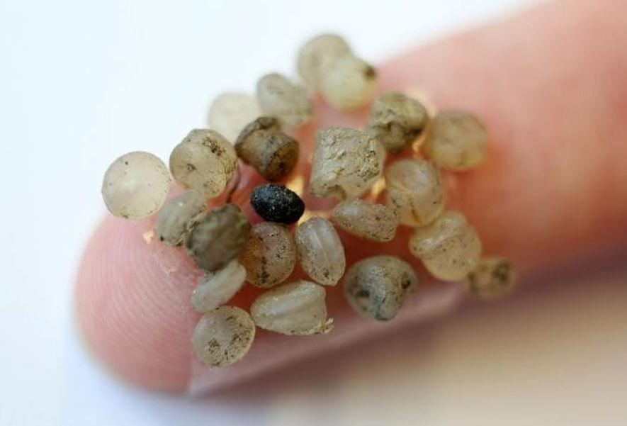 Pedaços de microplástico encontrados nas margens do rio Warnow, em Rostock, na Alemanha, a 17 de ...