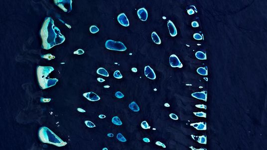 Microplásticos Invadiram Praticamente Todos os Recantos do Mundo