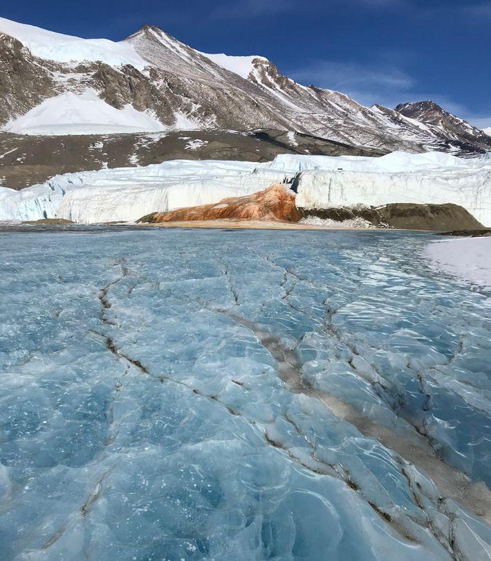 """Na extremidade do Glaciar Taylor, uma salmoura hipersalina, conhecida por """"Blood Falls"""", flui para a superfície ..."""