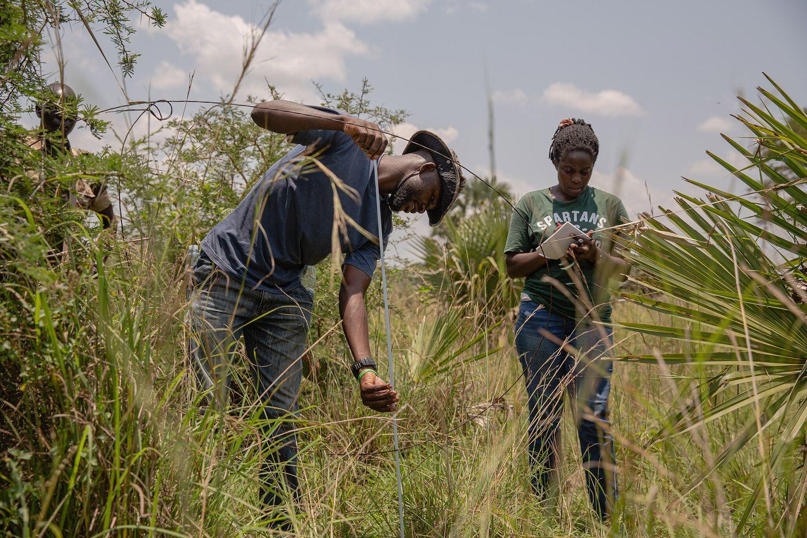 Luhonda Peter e Sophia Jingo, que trabalham na iniciativa Snares to Wares, medem o diâmetro de ...