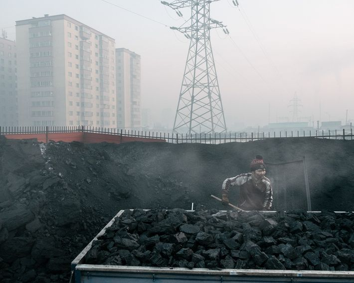 Um vendedor de carvão em Bayankhoshuu, um dos bairros mais poluídos da capital da Mongólia, Ulaanbaatar.