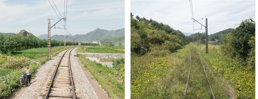 A linha entre Pyongyang e Rason rodeada, ou coberta, por flores silvestres e alinhada por flores ...