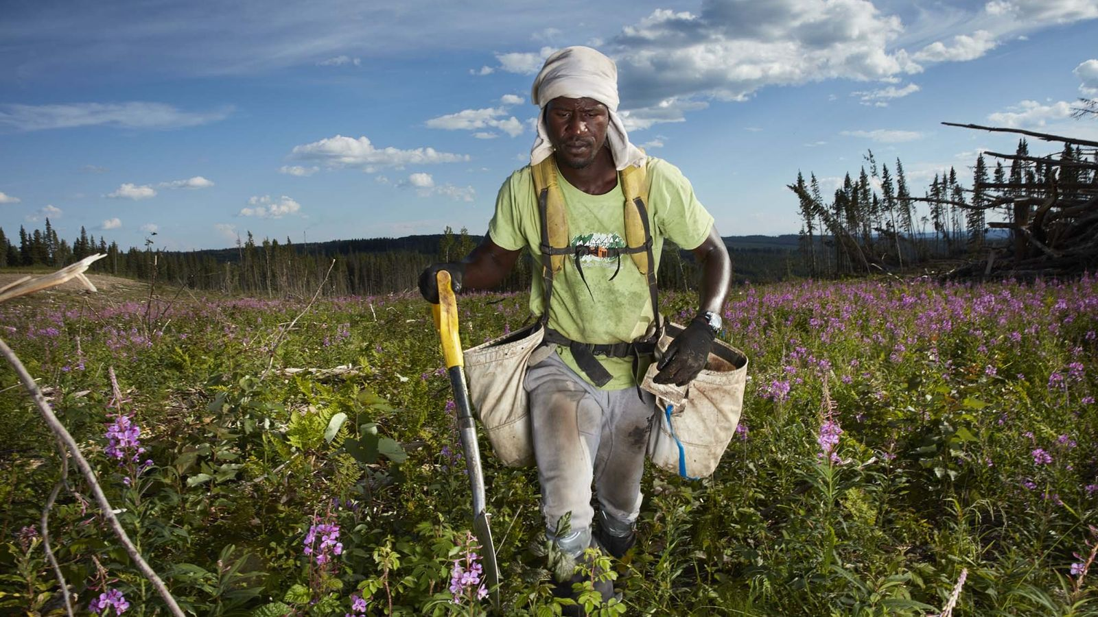 Mouhamadou Falilou-Sady está a plantar em Wonovon, na Colúmbia Britânica. Os plantadores de árvores recebem taxas ...