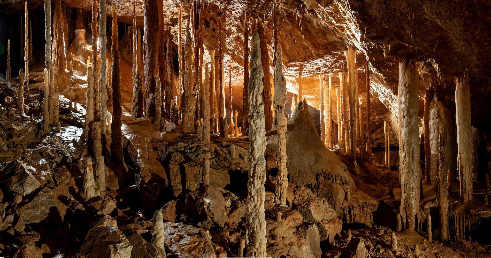 Estalagmites erguem-se dos sedimentos pálidos da 'Floresta Embriagada' – uma caverna no Bornéu que tem este ...