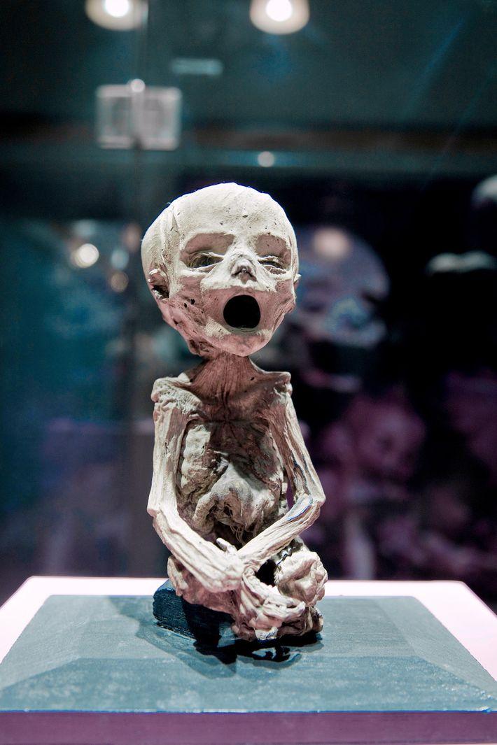 Museu das Múmias em Guanajuato