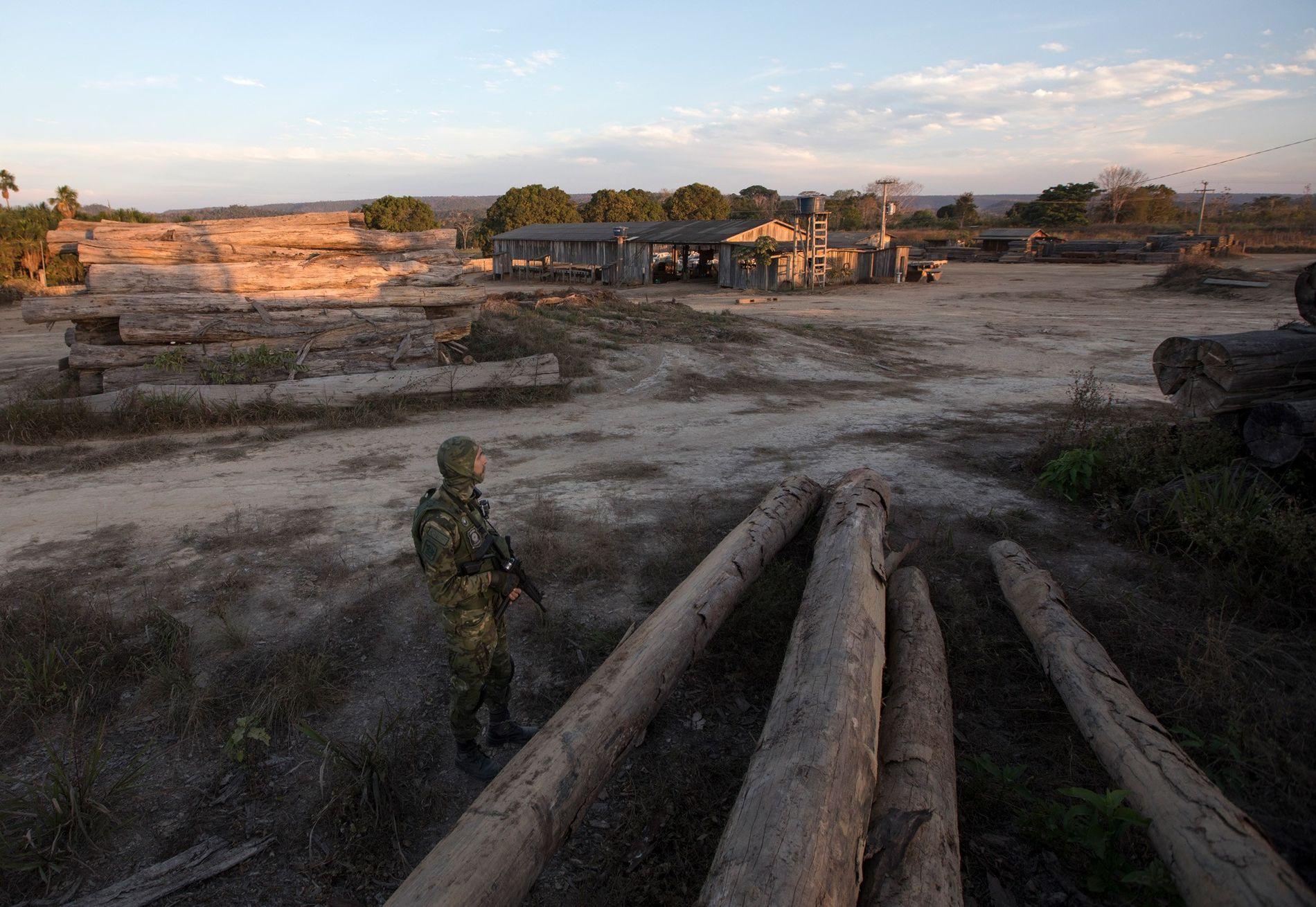Um oficial solitário do IBAMA a vigiar uma serração em Boa Vista do Pacarana, na Rondônia. ...